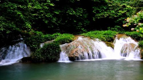 青峰峡森林公园2.jpg